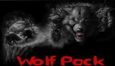 Install Wolf Pack On Kodi 17